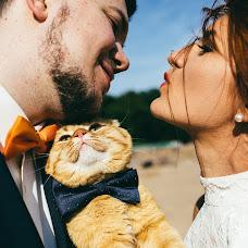 Wedding photographer Konstantin Litvinov (Km27). Photo of 27.09.2016