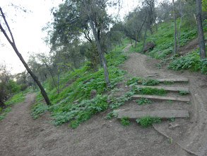 Photo: A quaint looking path up the mountain.