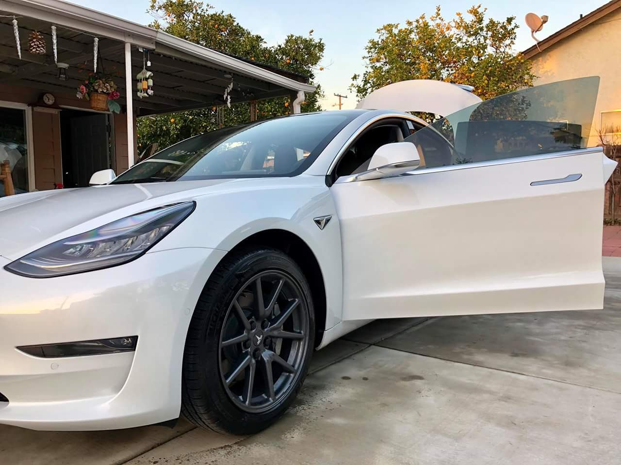 Pictures of Model 3s with 18