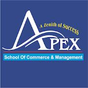 Apex Classes Indore