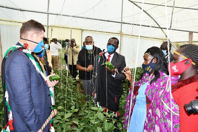 Former US Ambassador Kyle McCarter with West Pokot Governor John Lonyangapuo in a green house in Kabichbich, West Pokot county in 2019.