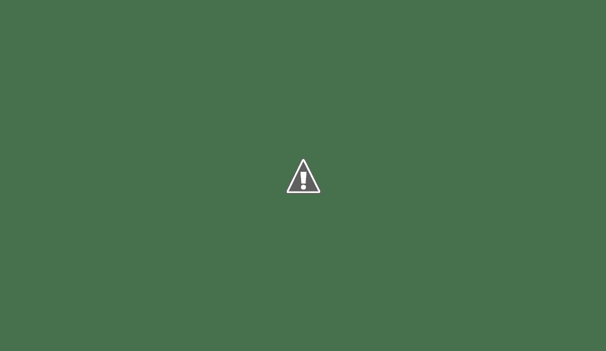 Marielle Franco, Racismo e Fake News