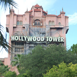 Hollywood Tower by Keith Heinly - City,  Street & Park  Amusement Parks ( building, florida, trees, hollywood studios, disney )