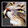 com.clntgames.slidingpuzzle