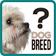 Download Guess the dog breed For PC Windows and Mac