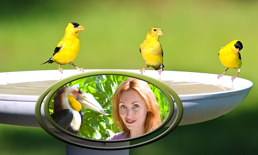 Ptáci foto selfie - náhled