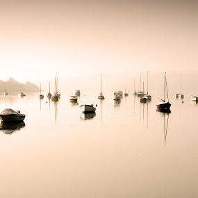 Early Morning Mist by Martyn Norsworthy - Landscapes Sunsets & Sunrises