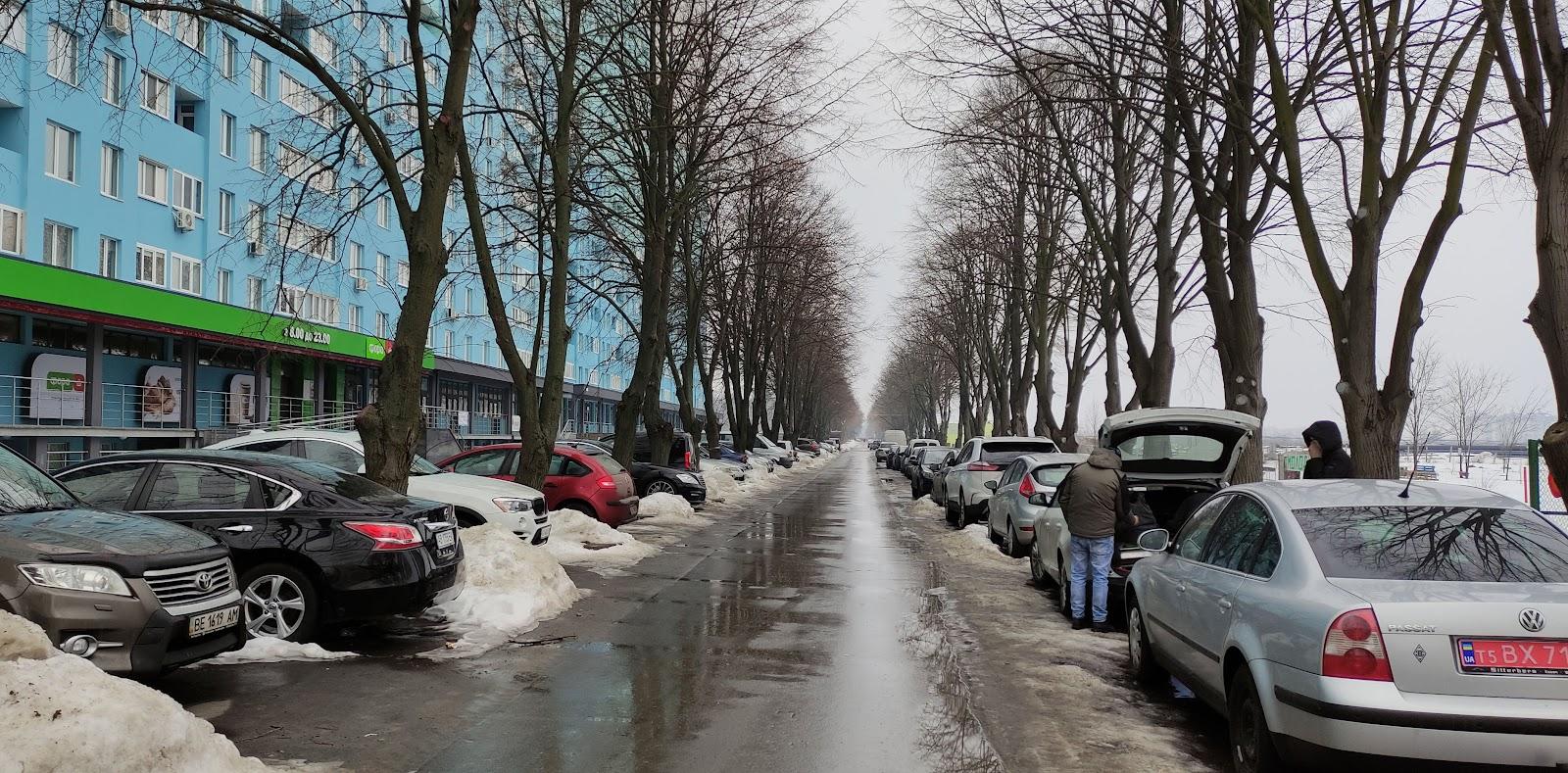 """Якщо у вашій уяві слово """"бульвар"""" асоціюється з лавками під деревами, де можна сісти відпочити, чи тінистою алеєю, де неквапливо прогулюються люди – то ваша уява розшириться. Бульвар сьогодні – це також місце, де впритул до дерев у два-три ряди запарковані авто, а алея служить їм транзитною дорогою. Люди тут можуть """"прогулятися"""" узбіччям"""
