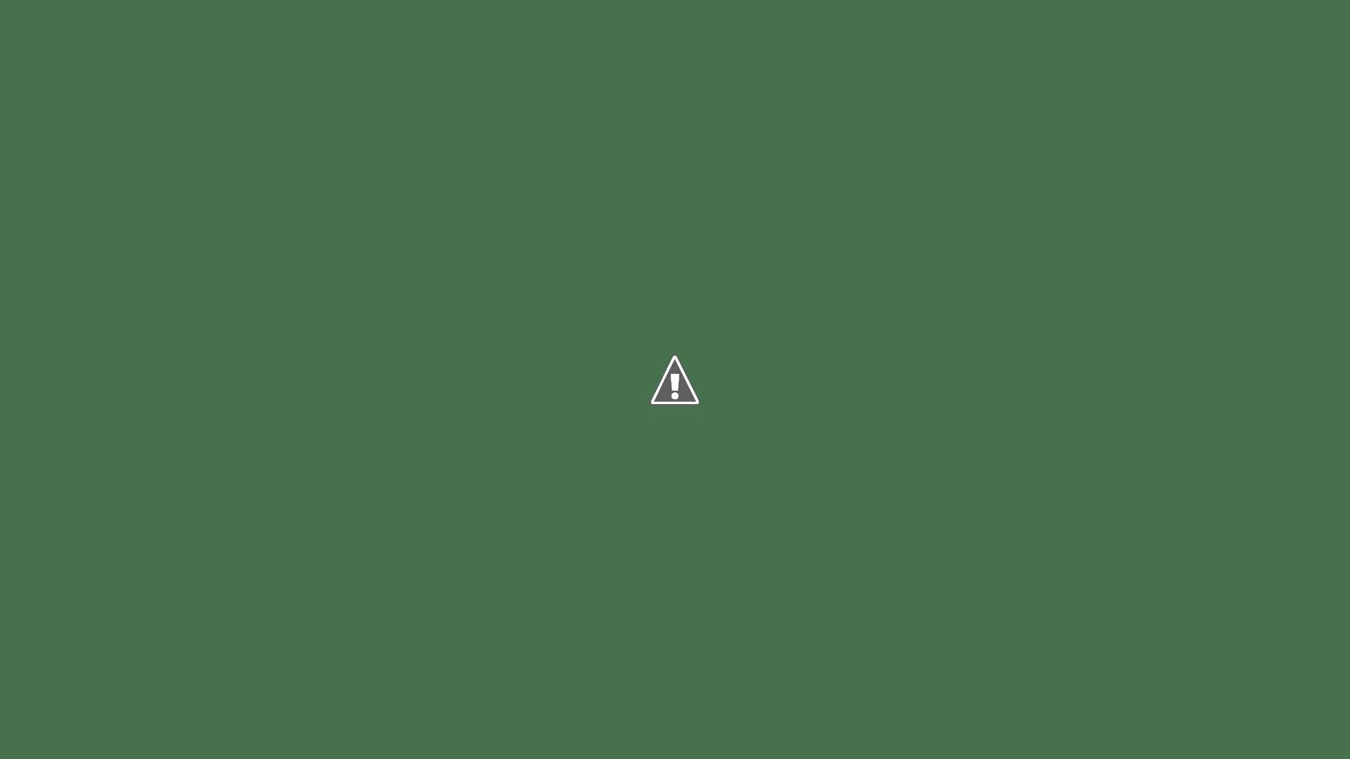 Jardín vertical en la empresa Canal Isabel II, Madrid