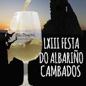 LXIII FESTA DO ALBARIÑO icon
