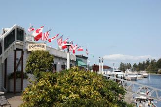 Photo: (Year 2) Day 334 - Roche Harbor #4