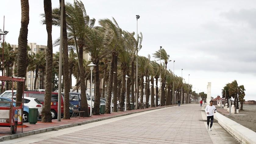 Imagen de archivo del Paseo Marítimo de Almería en un día de viento.