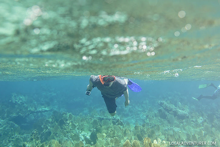 Turks and Caicos Snorkeling (15 Best Things to Do in Turks and Caicos).