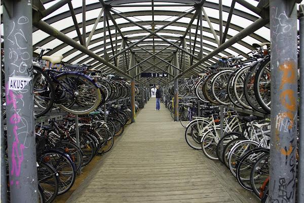 parcheggio bici ... notevole ! di marmiria