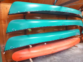 Photo: To increase the capacity of the field, we will be using a second fleet of canoes (a mix of those shown in the photo). First come, first served on kayak/canoe choice, but all are similar in their speed, weight and comfort and should offer no significant advantage either way.
