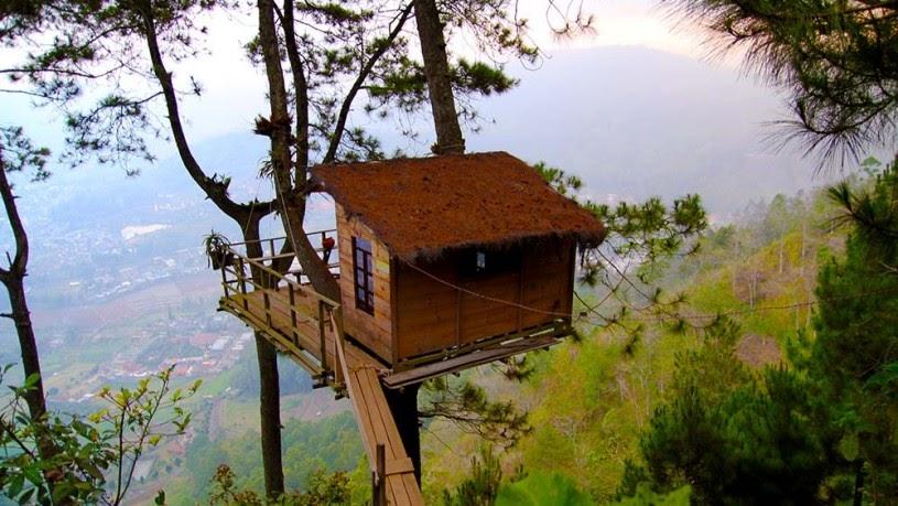 rumah pohon, Skysphere ; Rumah Pohon Masa Depan Serba Canggih