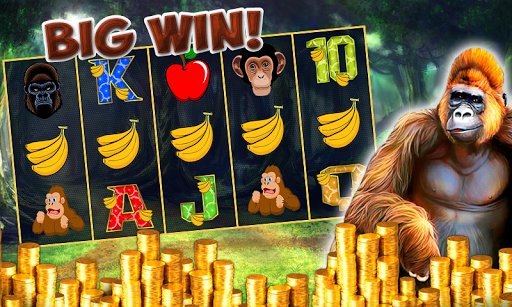 Slots Jungle Wild Kong Casino