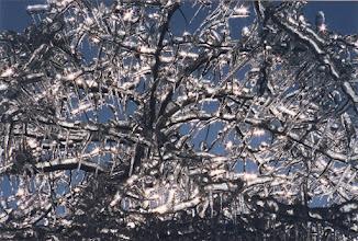 Photo: ICE STORM