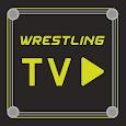 Wrestling TV: wrestling all stars fighting