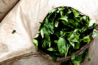 Photo: Year 2 Day 115 - Sack of Tea Leaves