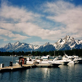 Grand Tetons by Sarah Harding - Novices Only Landscapes ( nature, outdoors, novices only, scenic, landscape,  )