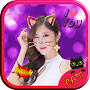 Cat Face Photo Effect&Sticker APK icon