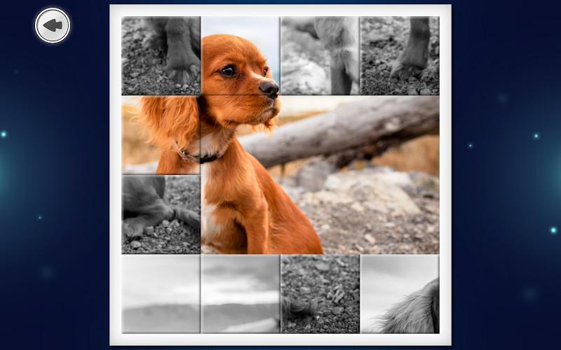 IMAGEine Premium Screenshot 11