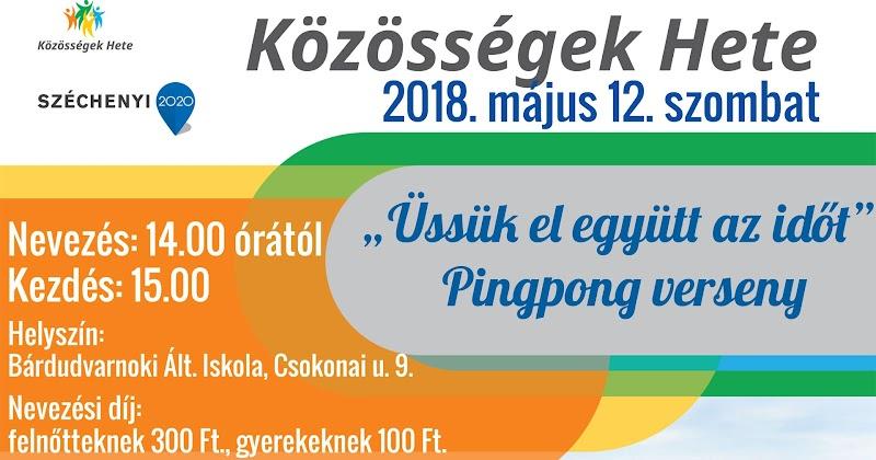 Pingpong verseny  - 2018. május 12. szombat