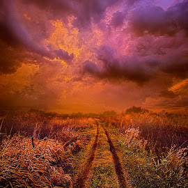Only Own What You Can Carry With You by Phil Koch - Transportation Roads ( trending, country, shadow, rural, office, scenic, hope, canon, spring, beautiful, path, pastel, road, weather, season, sky, flowers, emotions, journey, natural, dirt, inspired, heaven, morning, field, light, peace, shadows, dawn, photography, love, sunrise, mood, vertical, endless, clouds, fineart, sun, life, colors, unity, joy, lines, popular, arts, meadow, wisconsin, art, living, green, nature, inspirational, dramatic, portrait, horizons, horizon, environment, outdoors, blue, sunset, earth, travel, serene, landscape )