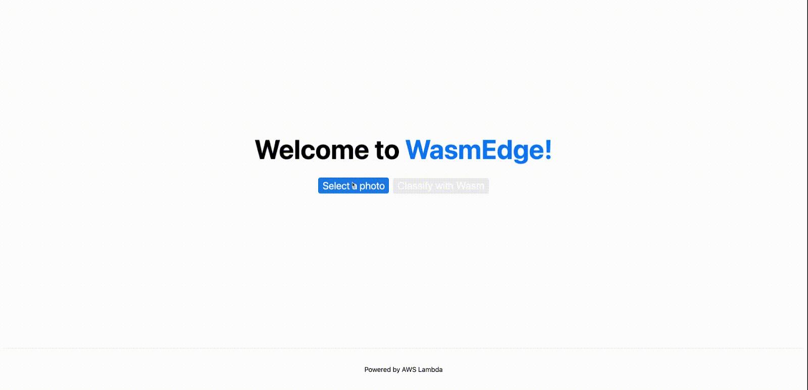 aws-lambda-wasmedge-runtime-tensorflow.gif