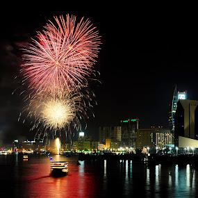 Creek Park Celebrating Dubai Shopping Festival  2013 by Jbern Eugenio - Public Holidays Other ( pwcfireworks, fireworks )