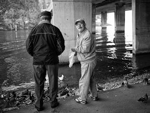 Photo: feeding ducks...  #street #streettogs #streetphotography #shootthestreet  #blackandwhite #blackandwhitephotography #bw #monochrome  #monochromeartyclub #monochromephotography