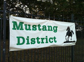 Photo: District banner Mustang green