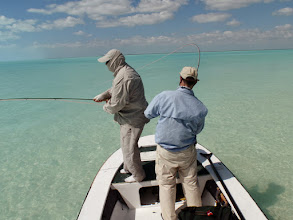 Photo: Mad River Outfitters- February Bonefish Trip