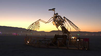 Photo: That's what happens when you attend too many burning man events.