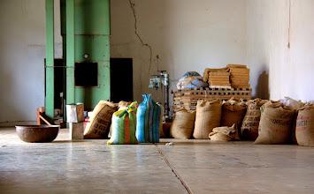Photo: visit coffee plantations