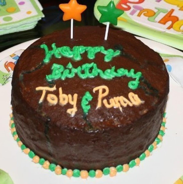 Party Cake (for Dogs Or Humans) Recipe
