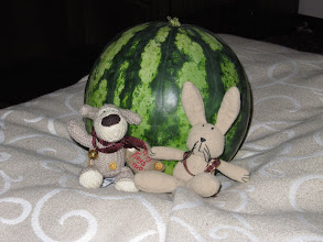 Photo: Day 89 - Baby Big Bun & Boofle With Their First Water Melon!