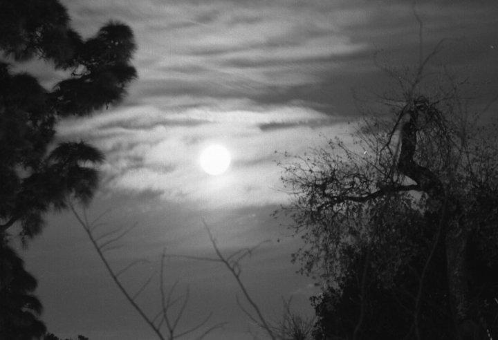 luna piena nella notte fonda di perniko