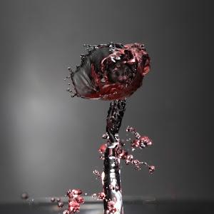 Water Rose.jpg