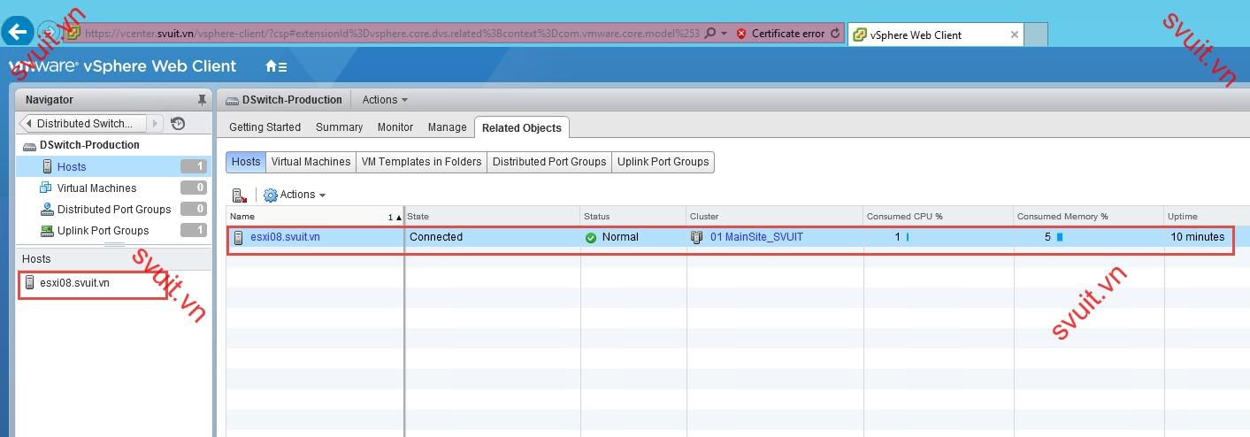 add esxi to vSphere Distributed Switch (11)