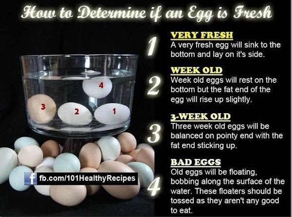 How To Determine If A Egg Is Fresh Recipe