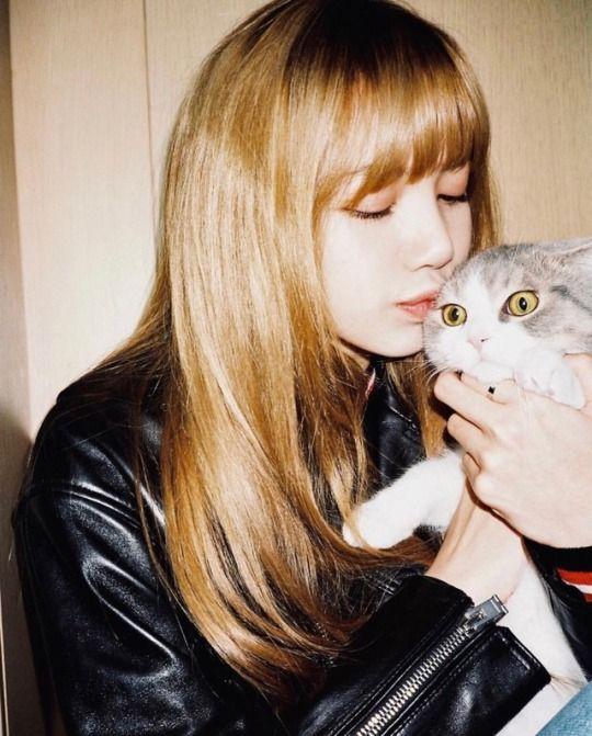 #lisa #cat #leo