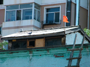 Photo: a pigeon cage,likely officially raised by QRRS for celebrating occasion, settled on reef of benzrad 朱子卓's QRRS Dorm. life's meanings improved with the peaceful birds.