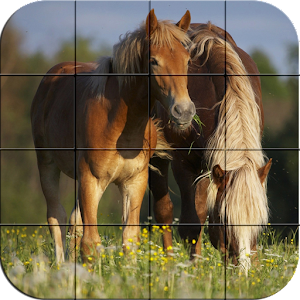 Puzzle – Beautiful Horses for PC and MAC