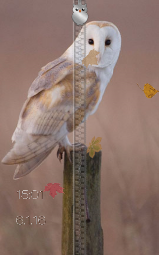 Falling Leaves Live Wallpaper Apk Download Owl Zipper Lock Screen Android Apps Apk 4647986