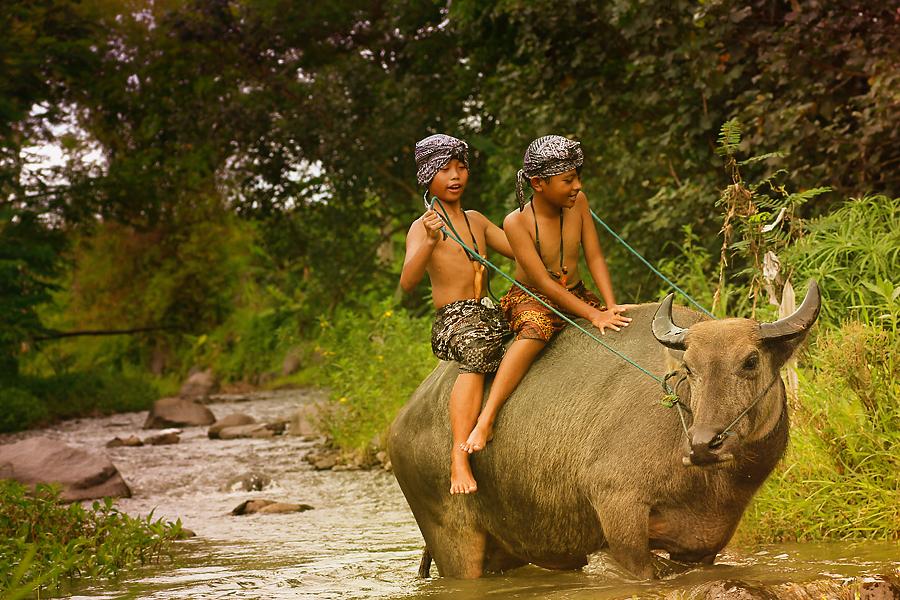 yiiihaaaaa... by Caraka Pamungkas - Transportation Other