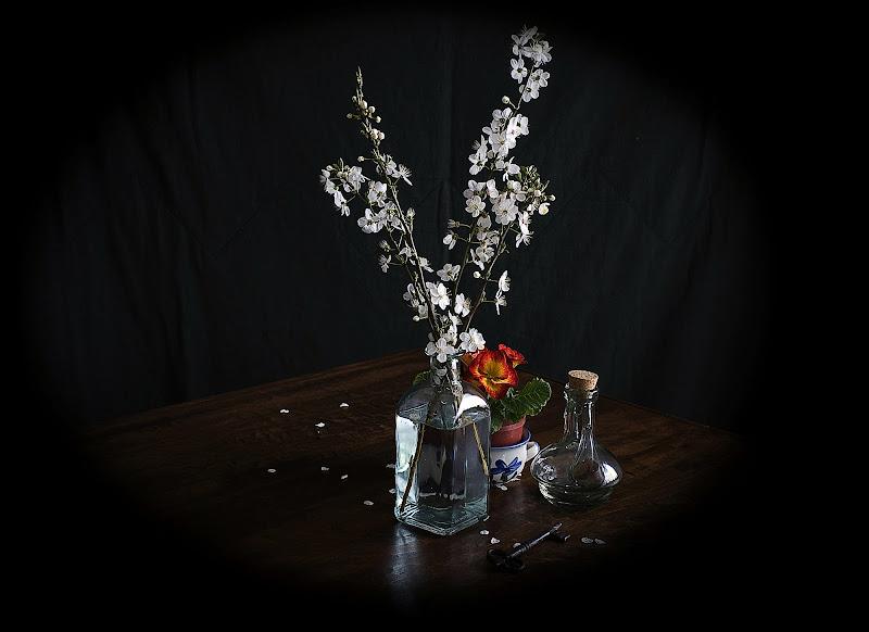 Voglia di primavera di mariarosa-bc