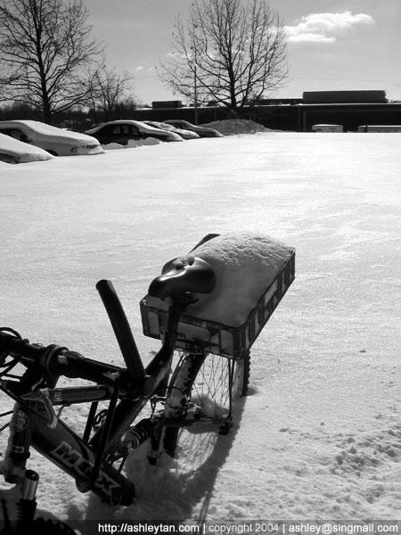 Snow bike.