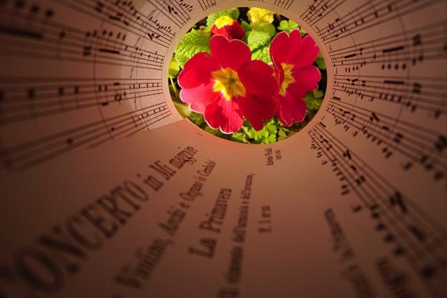 """La Primavera da """" Le 4 Stagioni"""" di A. Vivaldi  di Doremi"""
